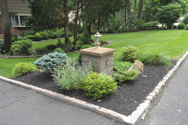 Paver stone landscaped curb lawn tree and shrubbery installation