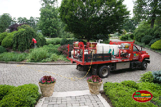 Tree Service- Spray and Feed - Sage Tree Service - Watchung NJ