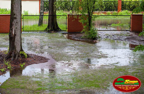 Yard Flooding Solutions
