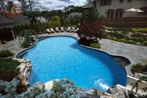 Fully landscaped swimming pool area with stone deck